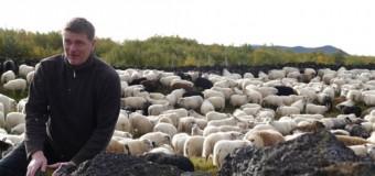 Concorso Racconti 2014 – Vittoria di Martino – Quattro Lettere dall'Islanda